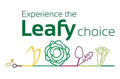 Leafy_main_image.jpg