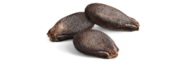 Watermelon_seeds.png